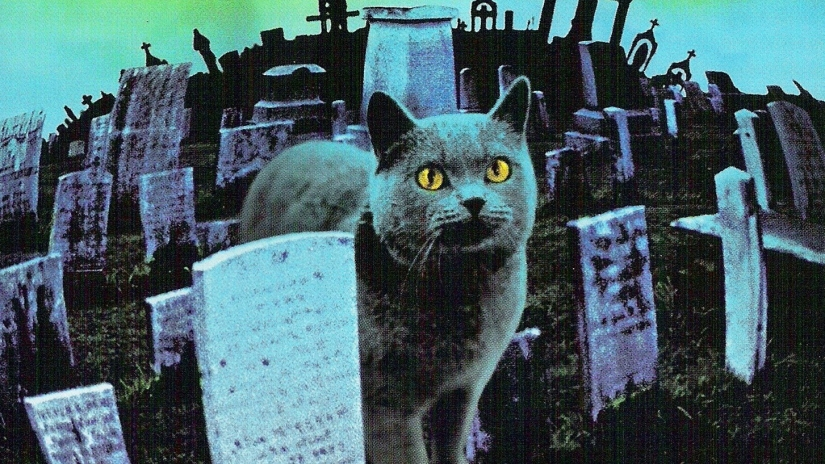 Pet Sematary Winston 'Church' Churchill Cat